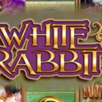 slot white rabbit