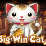 Big Win Cat slot online